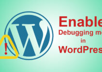 How to enable Debugging mode in WordPress
